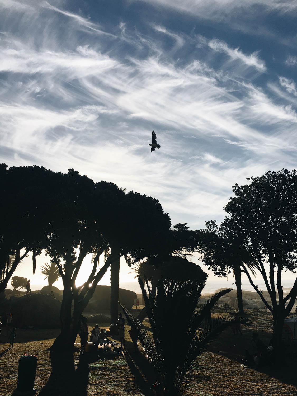 Cape-Town©Cecilia-Capri-2