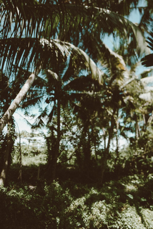 ©CeciliaCapri_Sri-Lanke-Travel-Guide-1480376